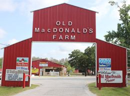 OldMacdonald's Farm Humble, Texas - petty zoo, pony ride, train ride, swimming pool, pumpkin patch, playground