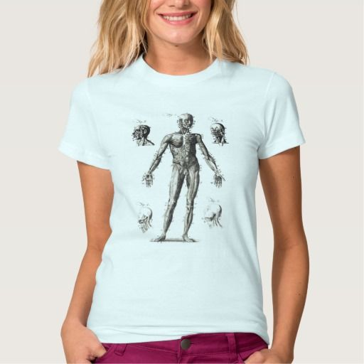 Anatomy of Human Body Muscles T Shirt, Hoodie Sweatshirt