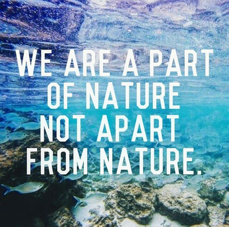 We Are A Part Of Nature Not Apart From Nature.