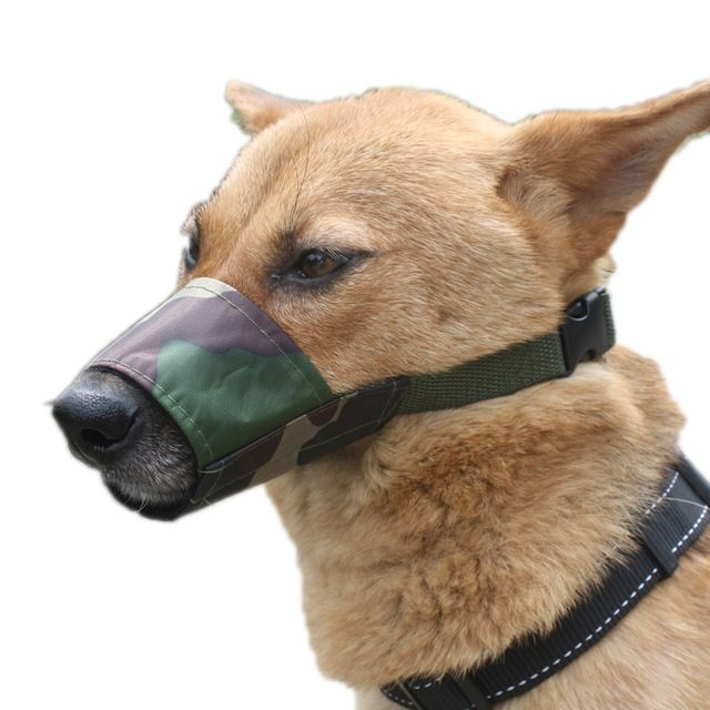 Best Dog Muzzle For Grooming