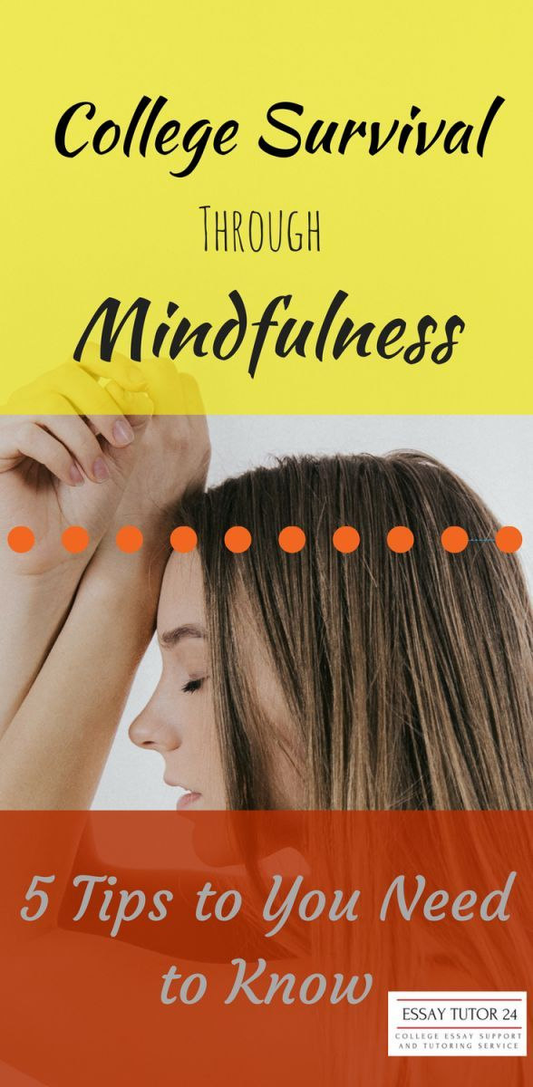 College Success Through Mindfulness  Tips You Need To Know  Top  Mindfulness As A Tool To Reduce Stress And Anxiety For College Students   Tips And Secrets To Begin Living A Mindful Life Business Plan Writers In St Louis Mo also Essay English Example  Persuasive Essay Examples For High School