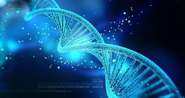 Biyologlar DNA'yı Geri Saran Motor Proteinini Keşfettiler Harun Yahya | Gerçekler