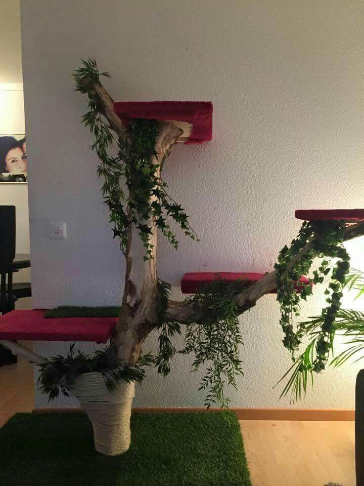 Die besten ideen zu kratzbaum selber bauen auf