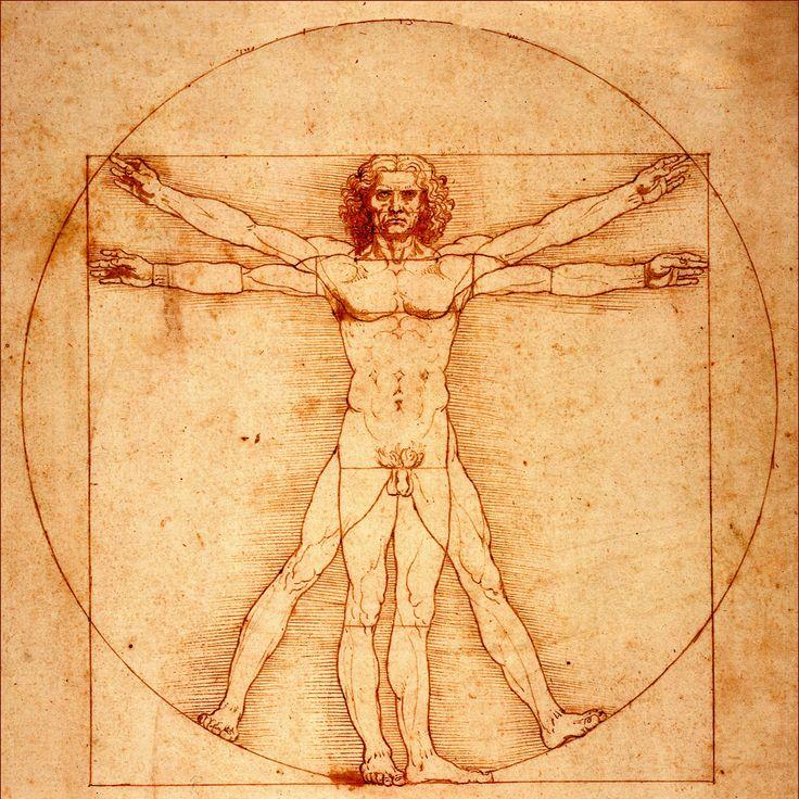 Mejores 78 imágenes de Anatomía Humana en Pinterest | Referencia de ...