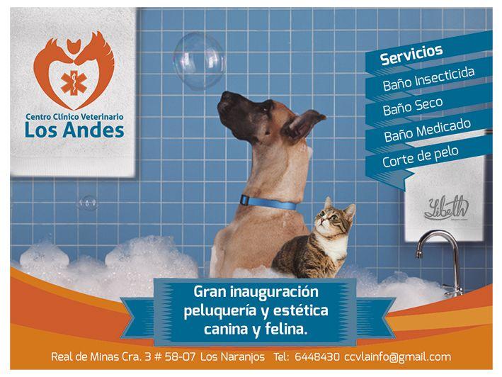 Cartel Publicitario. Diseño personal. Autor: Yibeth Gonzalez Silva. Centro Clínico Veterinario Los Andes. Bucaramanga - Santander. Técnica: digital, Adobe Photoshop.