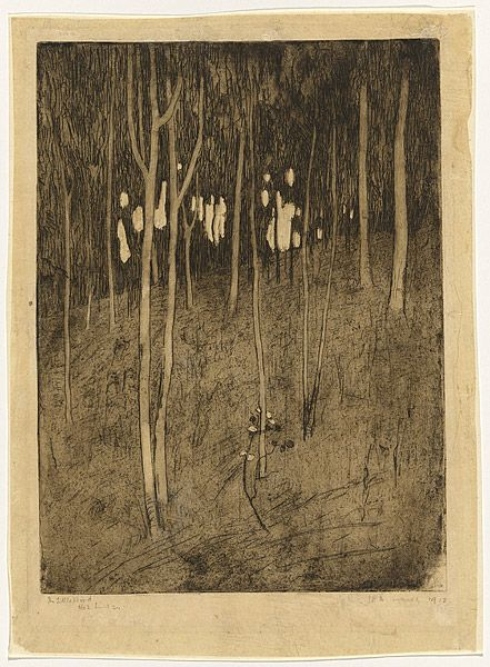 Jessie TRAILL, The little wood