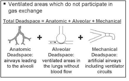 Pulmonary Shunt/Dead-space Ventilation | allnurses: