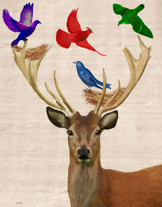 Deer Nesting Birds 8X10 Art Print Illustration par LoopyLolly