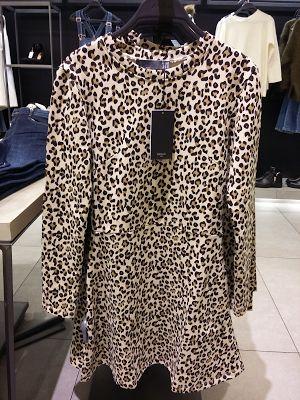 Ash 'n Chang: Leopard Print | Zara