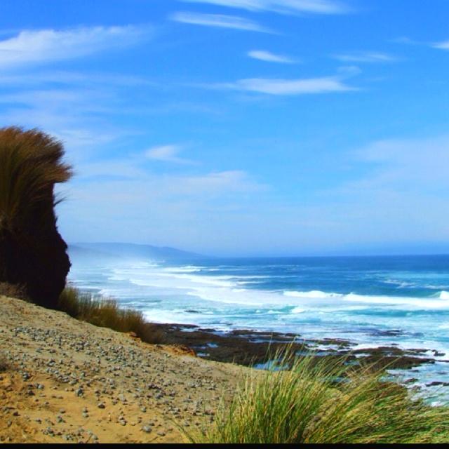 Far North - New Zealand