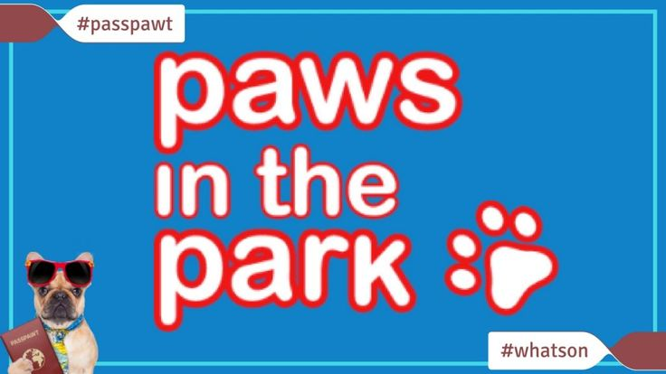 Whats On In Dogland  News  Paws in the Park Spring Show  Paws in the Park Spring Show Paws in the Park About Our Show Spring Show13  14 May 2017 South of England Showground Ardingly West Sussex  Spring is in the air so its time to get out and have fun with your dog! Come to Paws in the Park Spring show for a feast of fun with your furry friend including have a go activities arena displays lots of competitions  and lots of great shopping!  You can buy tickets online right now or check out all…