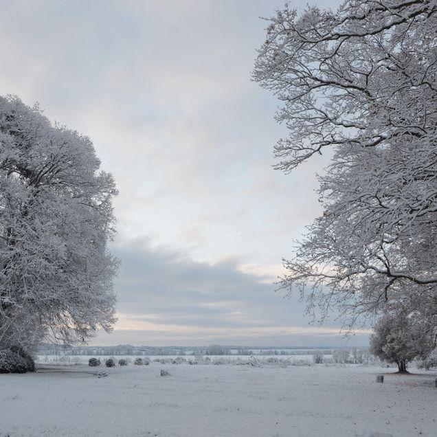 Morning #snow#landscape#burgundy #softness#lepavillondelorangerie#aureliegueniffey