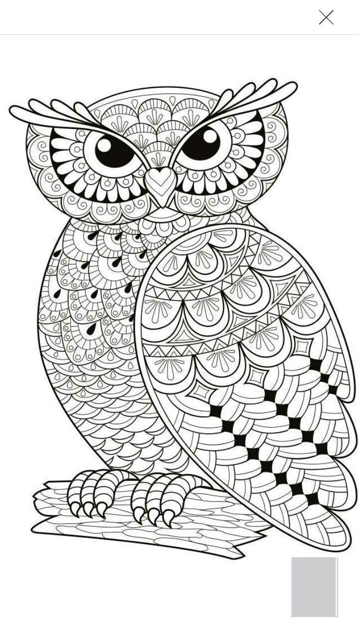 Coloring Pages Mandala Owl New Coloring Pages Owls Inspirational Owl Mandala Coloring Pages Of Col Owl Coloring Pages Bird Coloring Pages Animal Coloring Pages