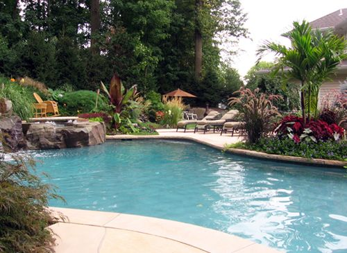 1000 Images About Tropical Landscape Pool Area On Pinterest Planters Pool Steps And Trees