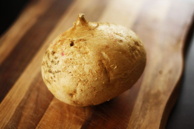 Jicama Information Jicama is a perennial vine plant growing vigorously under semitropical and tropical climates Scientific name: Pachyrhizus erosus. ..