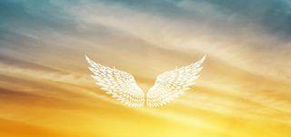 permetti ai tuoi angeli