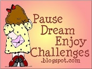 Pause Dream Enjoy Challenges: Ch# 52: Anything Goes