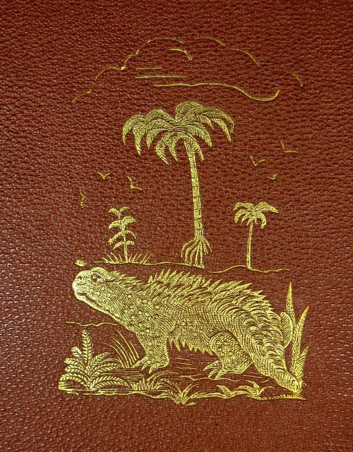 Hylaeosaurus gilt cover for US edition of Figuier's 'The World Before the Deluge', 19th century HD