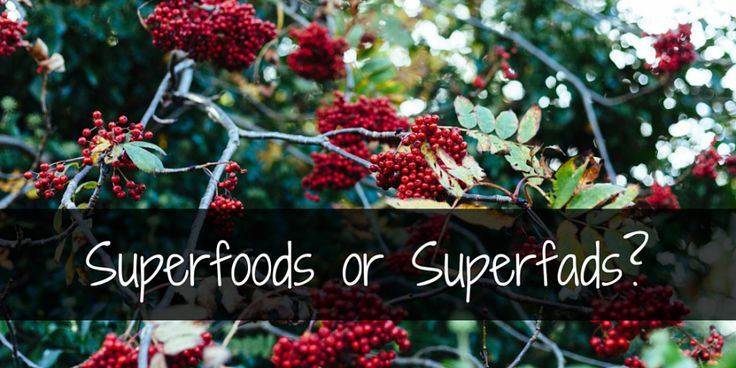 Superfoods or Superfads- (1)