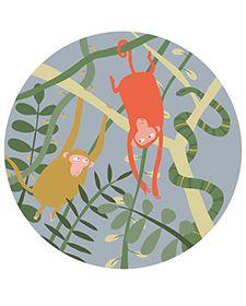 Viidakko lautanen apina