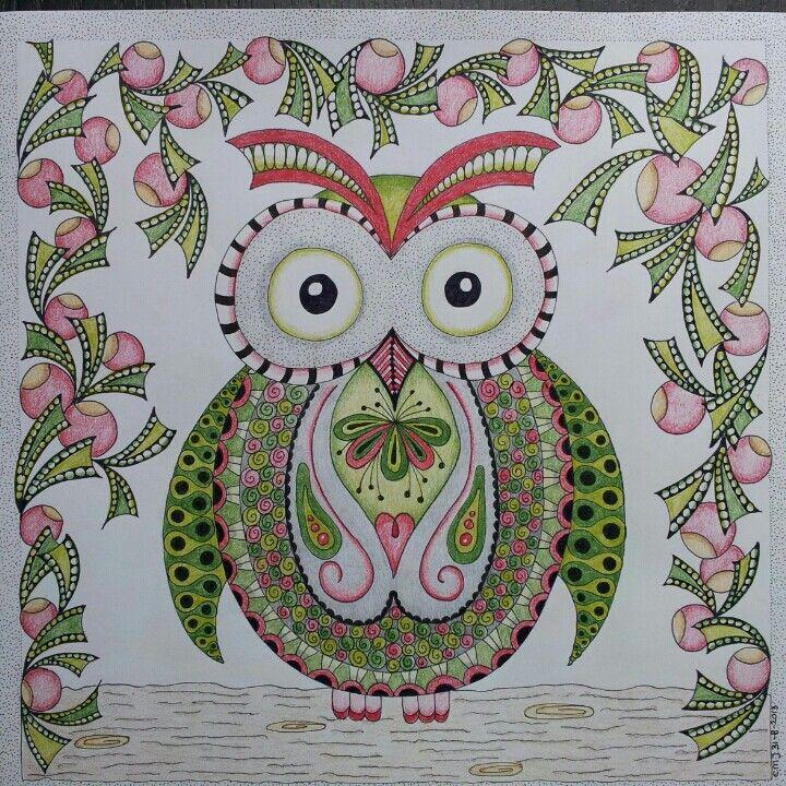wk 35 little owl