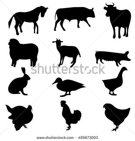 Vector set of silhouettes of farm animals isolated on white background. Livestock and poultry.