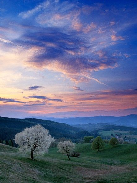 Sunset on the hills -