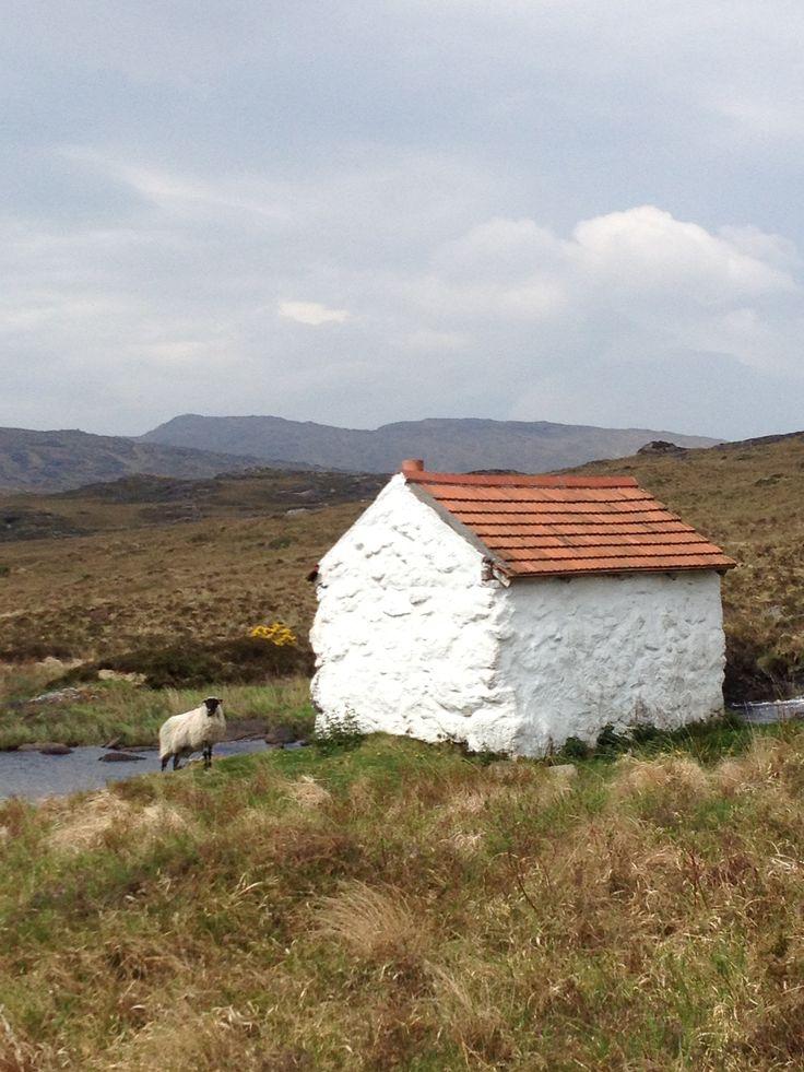 Ireland co. Mayo