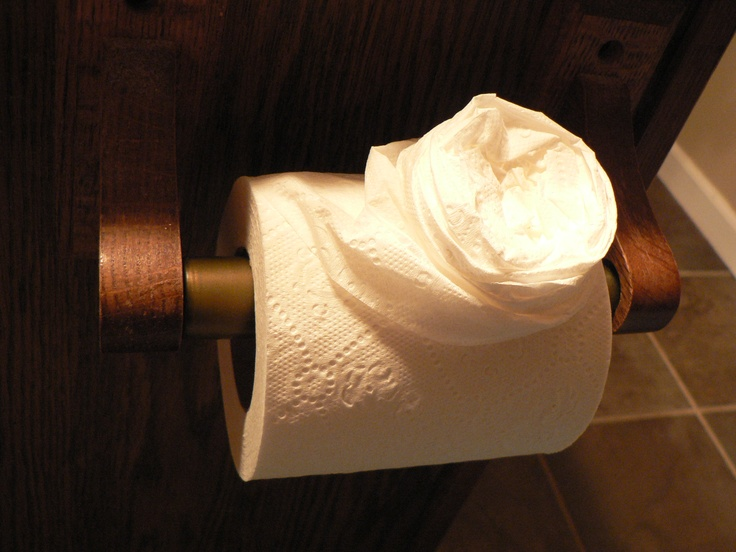 Easiest Toilet Paper Origami Ever