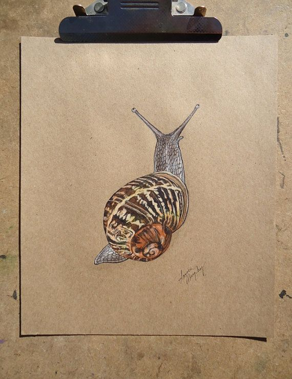 Original Snail Art on Brown Paper by ouroboros81 on Etsy, $90.00