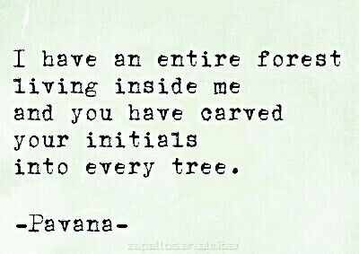 """""""I have an entire forest living inside me and you have carved your initials into every tree."""" Quote by Pavana."""