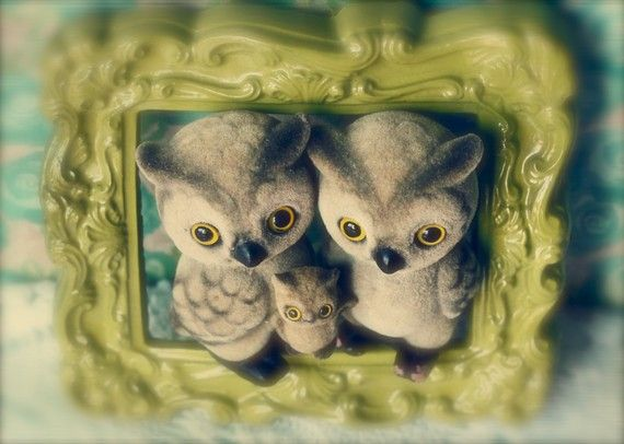 119 Best Owls For Baby Shower Amp Nursery Images On Pinterest