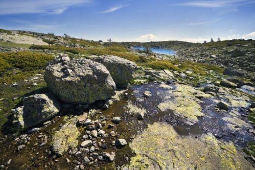 #Curso Internacional de Gestión de Áreas Protegidas en inglés de #Ednya, en el Parque Nacional Sierra de #Guadarrama de #Madrid http://www.campamentos.info/viewproperty/curso-internacional-de-gestion-de-areas-protegidas-ednya/530/es-ES