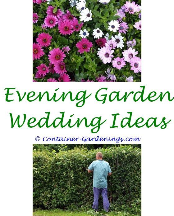 succulent garden ideas pinterest - veggie garden ideas nz.small back garden patio ideas organic gardening tips india dahlia garden ideas 4548479482