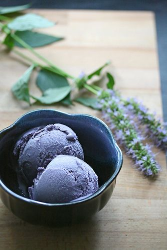 Blueberry-Hyssop Ice Cream: It's a really lovely combination… in fact, the scent of the custard was so mouthwateringly licoricy that I found myself hovering over the ice cream maker with spoon in hand like an anxious bumblebee buzzing around a hyssop blossom, waiting for my first taste.