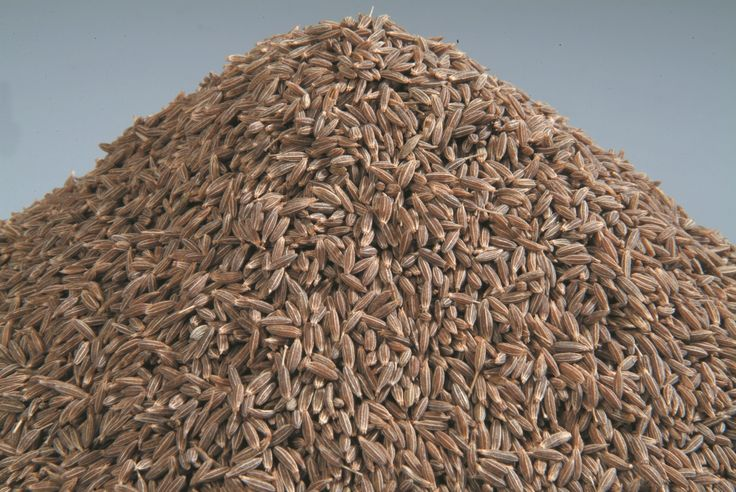 Organic Products India is renowned cumin seeds exporter and supplier in India. High quality organic cumin seeds are available bulk in container or custom packaging options.
