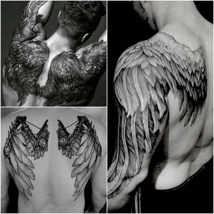 этапы эскизы тату крыльев на спине фото цветения