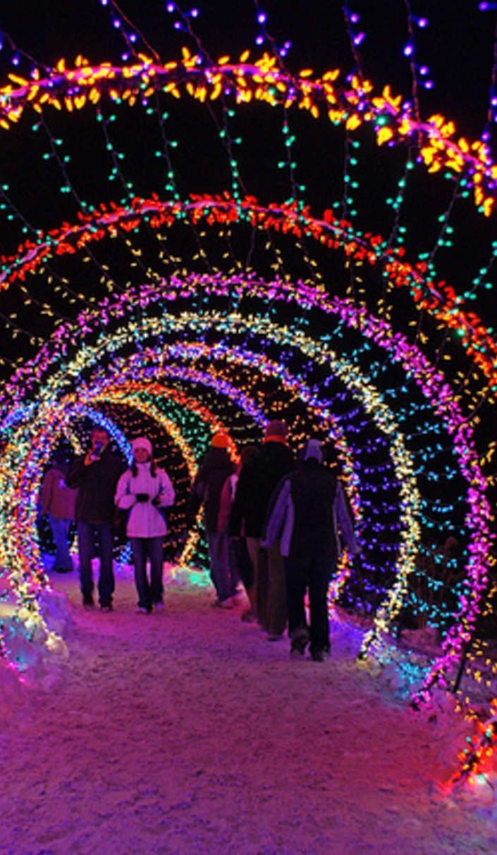 This is what 3.5 million Christmas lights looks like! Clifton, Ohio ...