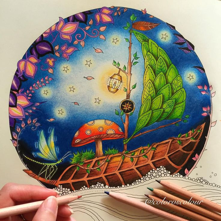 Starry Night JohannaBasford Enchantedforest Coloringbook Coloring Using Muji Brand Color