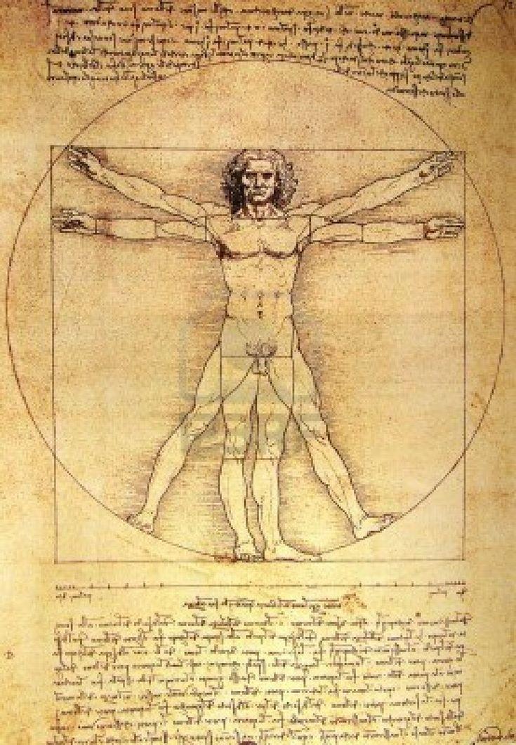 The Vitruvian Man - Renaissance Man