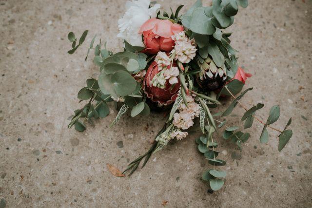 Credit: Renske Meinema Fotografie - bloem (plant), natuur, ornament, cactusfamilie, geen persoon, blad, plant, stilleven, kleur, rozen, woestijn, bloemen