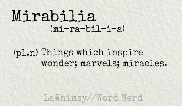 Mirabilia (pl.n) Things which inspire wonder; marvels; miracles...definition via Word Nerd by LaWhimsy
