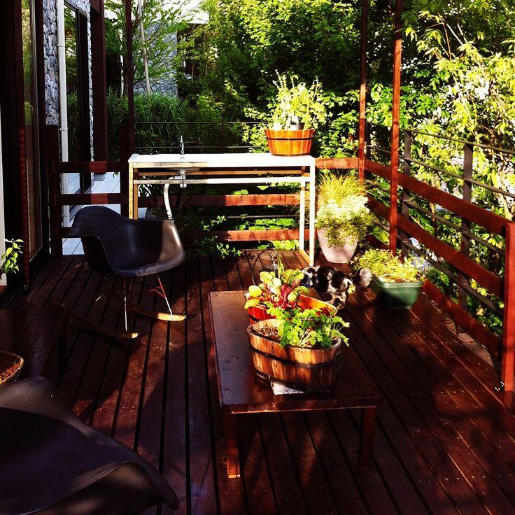 玄関/入り口/ウッドデッキ/植栽/DIYのインテリア実例 20150219 094358