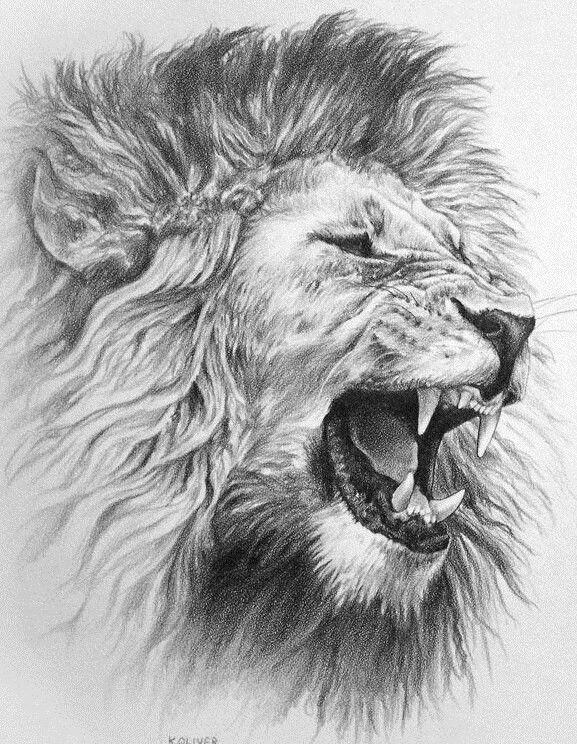 Lion. Art. Pen. Angry.