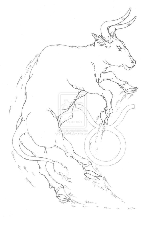 Taurus Bull Tattoo Sketch On Copy