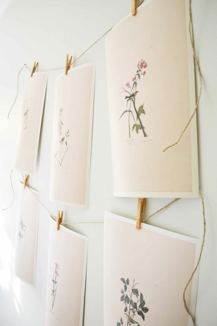 botanical prints on display with clothespins & twine