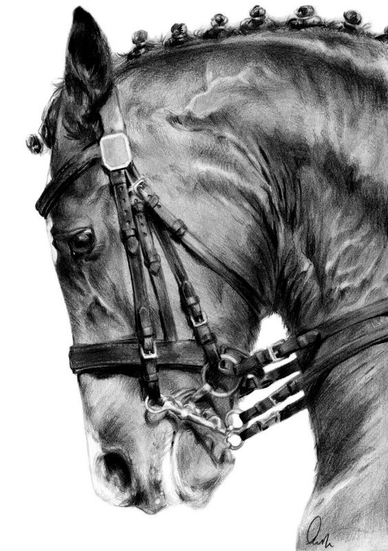 This could very possibly be the hardest thing I've drawn yet - the veins, the tack, the sweaty hide... it took me almost 24 straight hours. *whew* I think the end result is worth it, though. Here's...