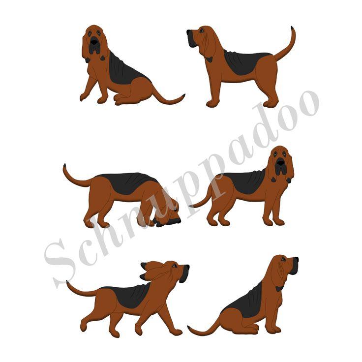 Bluthund. bloodhound.