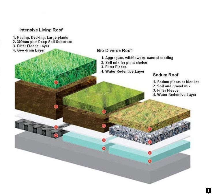 This Is Must See Web Content Find Out About Rainwater Collection System For Drinking Check The Webpage To Find Out More Sedum Roof Green Roof Living Roofs