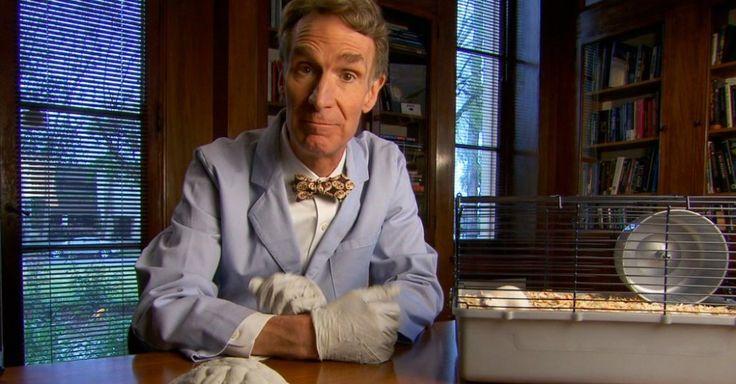 Cosmic Queries: Bill Nye Edition - Star Talk - Evolution - http://www.startalkradio.net/show/cosmic-queries-bill-nye-edition/